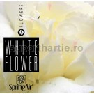 Odorizant de Camera White Flower